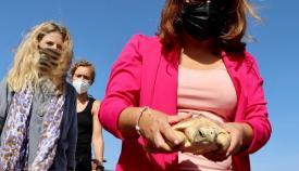 Una de las tortugas en el momento de la suelta
