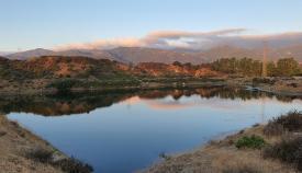 Verdemar lamenta las agresiones que sufre la laguna Huerta de Las Pilas