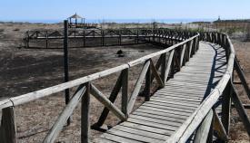 Imagen de la pasarela de la Laguna de Torreguadiaro. Foto: Mutimedia