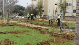 Mejoras en los parques y jardines de Miraflores, en San Roque