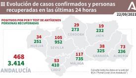 De los 53 contagios en la provincia de Cádiz, 27 son del Campo de Gibraltar.