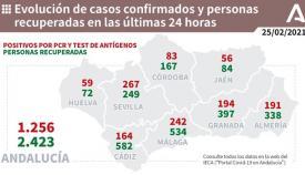 Los contagios en la provincia de Cádiz han aumentado en la última jornada