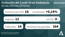 En las últimas horas se contabilizan 14 fallecidos en Andalucía