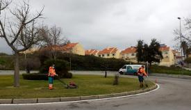 El Ayuntamiento trabaja en los espacios verdes de Algeciras