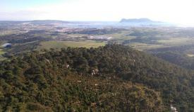 Herido un escalador en Algeciras tras caer en la zona del Bujeo