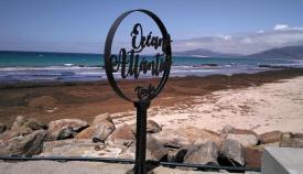 Una playa de Tarifa repleta de algas
