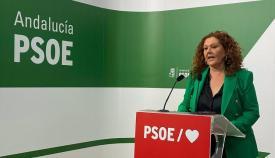 Araceli Maese, secretaria de Organzación del PSOE. Foto: NG
