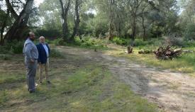 Un área recreativa ocupará la zona donde se celebra la Romería de San Enrique