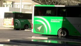 Autobuses del Consorcio de Transportes del Campo de Gibraltar