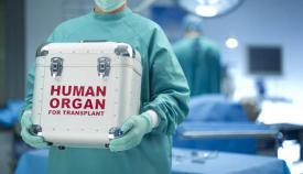 Donación de órganos de un bebé en Reino Unido