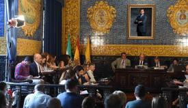 El pleno aprueba por unanimidad una moción para medir mejoras en los trenes