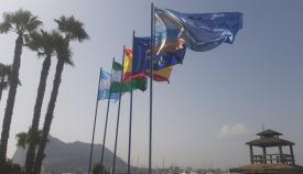 La bandera Ecoplayas 2021, ya en el litoral de Poniente de La Línea. Foto: lalínea.es