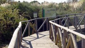 Una de las pasarelas en el estuario del río Guadiaro