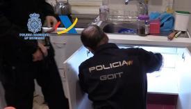 La 'Operación Tuerca' deja 37 detenidos de una organización en Algeciras