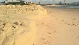 Presentado un proyecto a los fondos LIFE para recuperar las dunas del Rinconcillo
