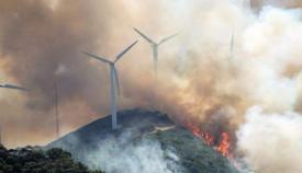 El Plan de Actuación Local de Emergencias Forestales en Algeciras, a punto