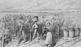 Antiguo grabado sobre labores en una viña