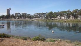 Desembocadura del río Guadarranque