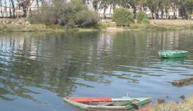 Río Guadarranque