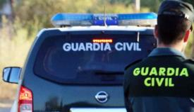 La Guardia Civil detuvo a los dos ladrones