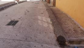 El PSOE lamenta que el PP ignore a los vecinos tras las quejas contra las pulgas