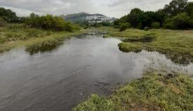 Imagen del río Hozgarganta con Jimena al fondo