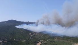 Imagen del incendio declarado en Tarifa. Foto: Plan INFOCA