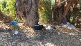 Verdemar denuncia la presencia de 'basuraleza' cerca del río Pícaro