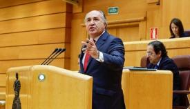 Landaluce volverá a llevar al Senado el debate sobre el alga invasora