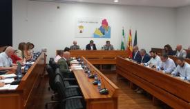 Imagen de la sesión celebrada en Mancomunidad