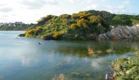 Adelante insta a incluir la laguna de la Huerta de las Pilas en el Inventario de Humedales