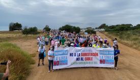 La marcha llegando a un punto muy cercano a la finca Los Portichuelos. Foto: Sergio Rodríguez