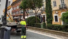 Operarios municipales del servicio de jardinería. Foto: lalínea.es