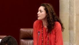 Inmaculada Nieto, portavoz parlamentaria de Adelante Andalucía. Foto: NG
