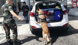 Un agente lituano, con su perro, en el puerto fronterizo de Algeciras. Foto LR