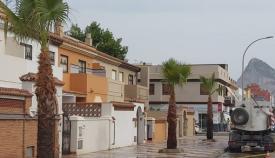 Varias palmeras puestas en la Avenida María Guerrero. Foto: lalínea.es