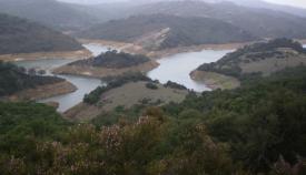 Una imagen de archivo del pantano de Castellar de la Frontera