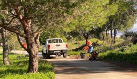 Acometen tareas de limpieza en los parques del Torrejón y El Pícaro