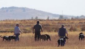 Partida de caza en una imagen de archivo