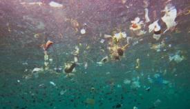Toneladas de plástico acaban en el mar diariamente