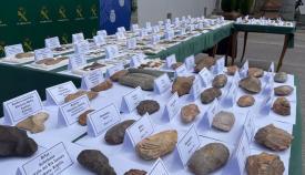 Piezas prehistóricas incautadas en La Línea. Foto: NG