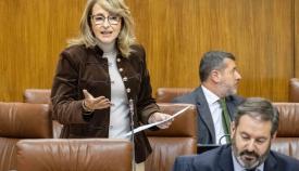 La parlamentaria Pilar Pintor. Foto PP