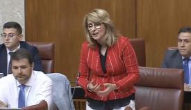 Pilar Pintor (PP), en el Parlamento de Andalucía