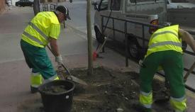 Dos operarios municipales trabajando en la ciudad