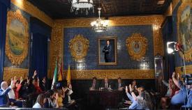 El pleno aprueba los nombramientos y la constitución de los órganos de gobierno