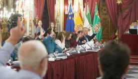 Pleno en la Diputación provincial de Cádiz