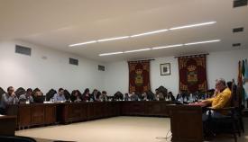 Una foto del pleno ordinario del Ayuntamiento de La Línea