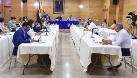 El pleno aprueba el plan de sectorización del Cortijo San Bernabé