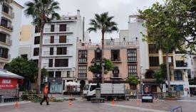 Trabajos de poda en la Plaza Alta de Algeciras. Foto: Ayto Algeciras