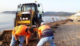 El Ayuntamiento pide colaboración a los usuarios en la limpieza de las playas